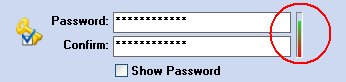 Screen of PenProtect where you should enter the Password. With the bar you have a password-level of your Flash Drive, Pen Drive or Flash Memory.